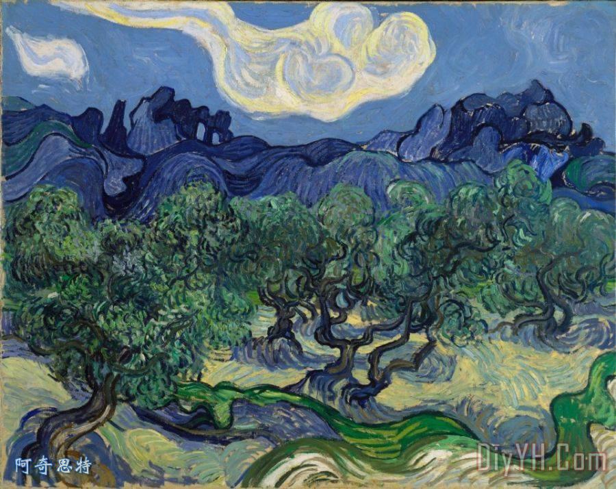 橄榄树装饰画