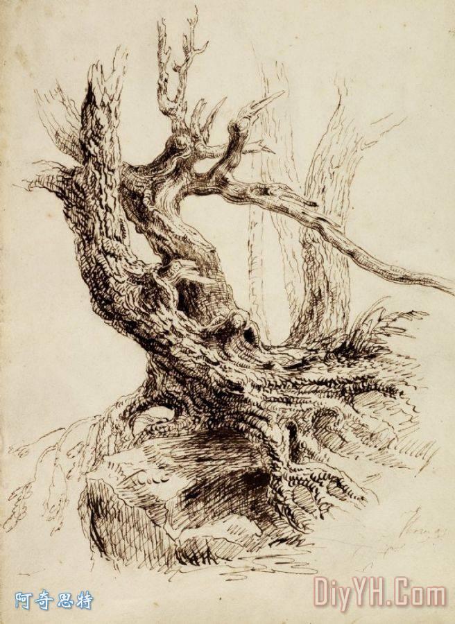 粗糙的树干 - 粗糙的树干装饰画