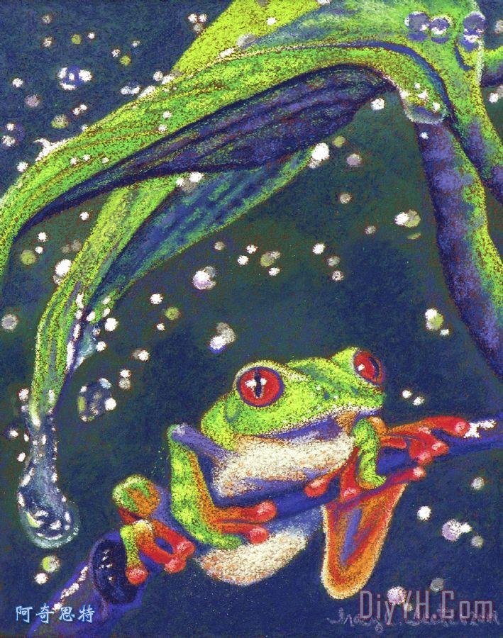 雨滴- 树蛙装饰画