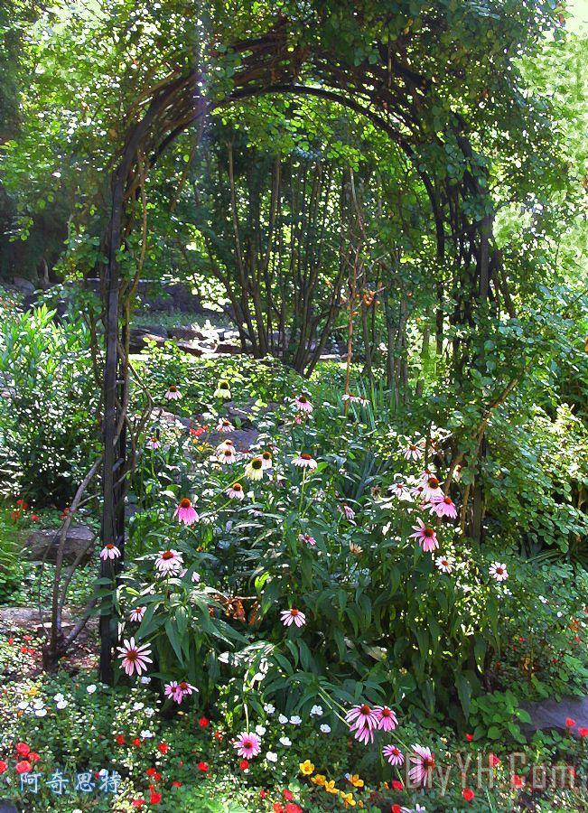 花园拱门装饰画