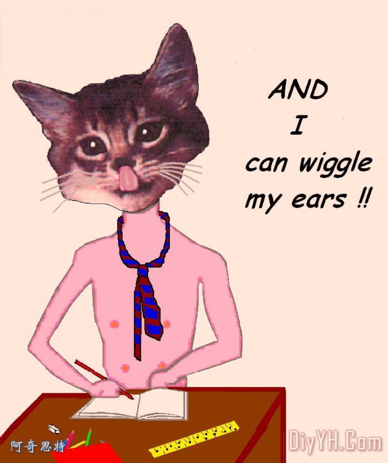 聪明的猫装饰画