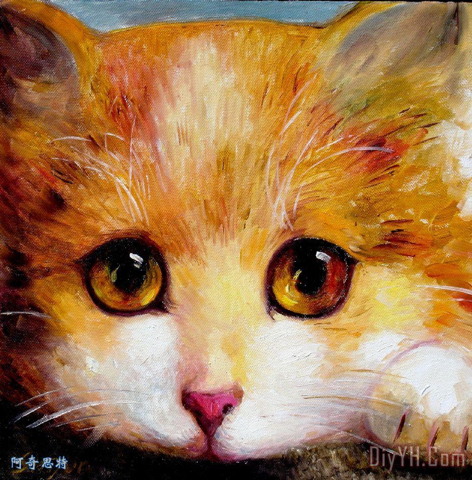 黄金眼装饰画_动物_肖像画_猫_娇小可爱的_现代的
