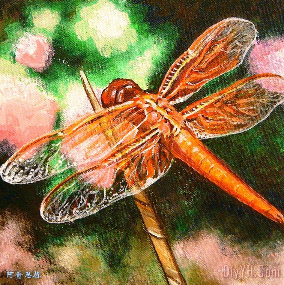 分享:      关键字:草坪 橙色的 昆虫 错误 蜻蜓  相关分类:动物简欧